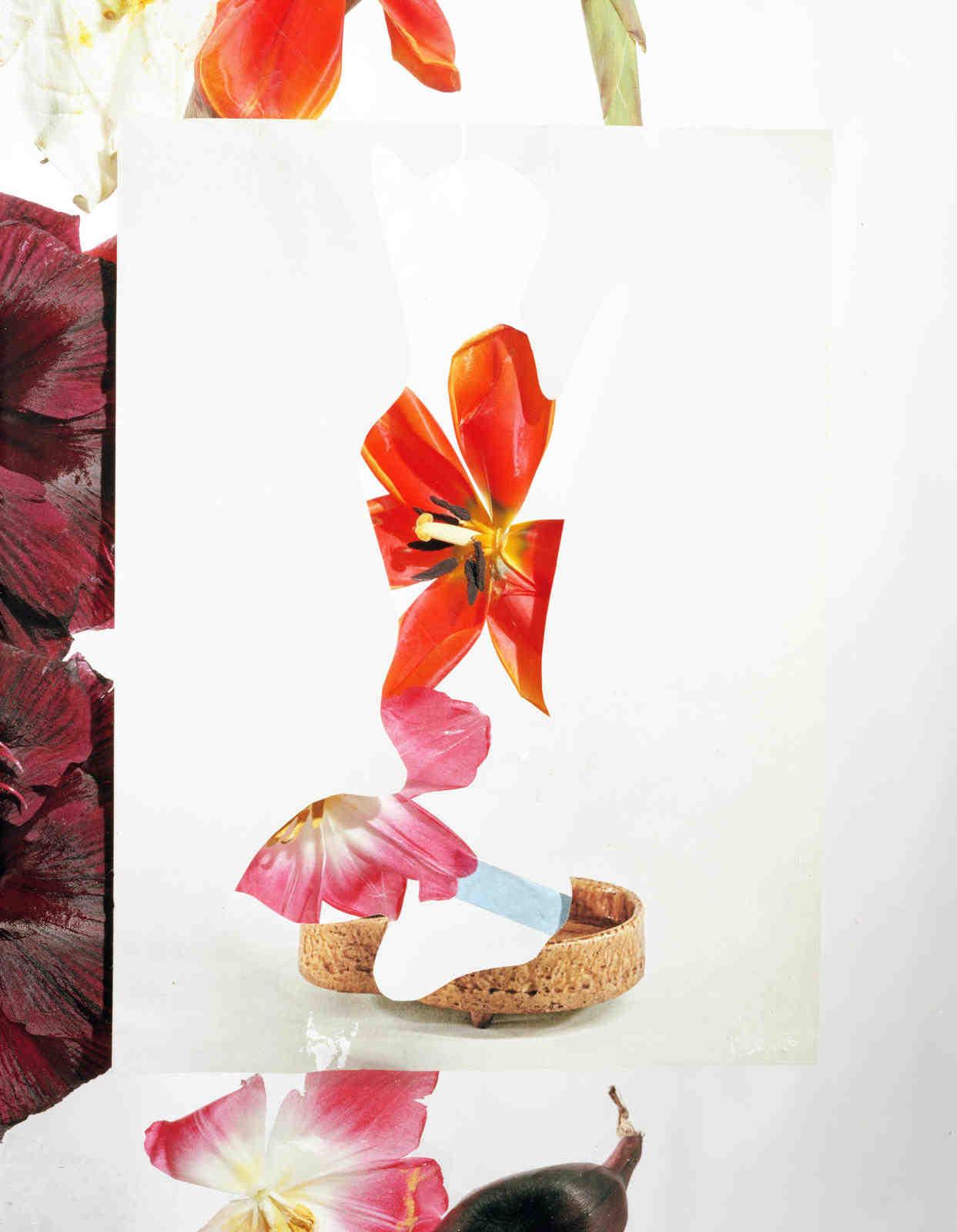 Issue 17 Flowers Bidoun