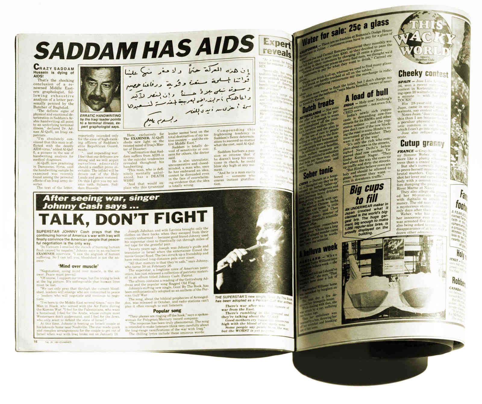 Saddam aids cover lo res